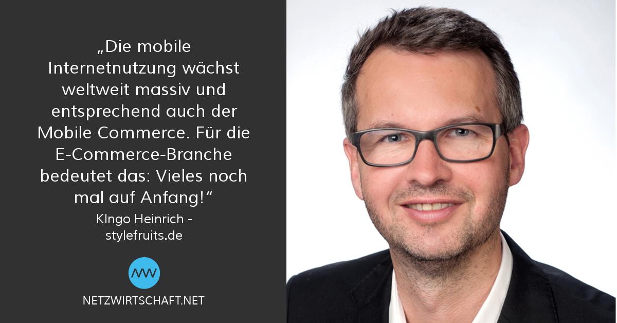 Netzwirtschaft Interview mit Ingo Heinrich, Stylefruits